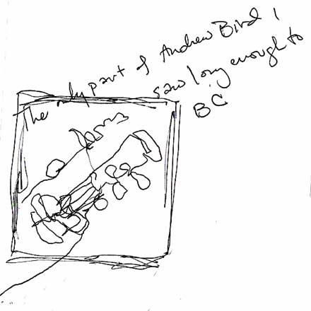 andrew bird, hand
